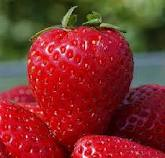 Strawberry extract helps protect skin from damaging UVA rays