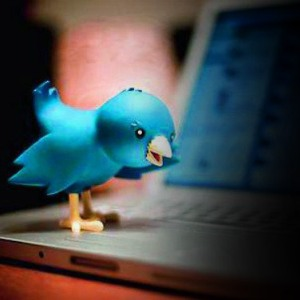 Twitterattis more prone to divorce, infidelity