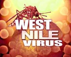 West Nile virus kills four in US