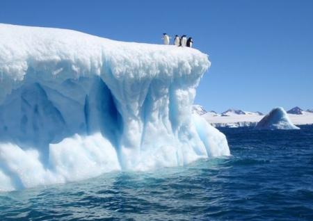 Sea ice at record lows at poles: Report
