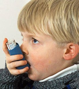 BPA exposure during pregnancy ups asthma risk in kids