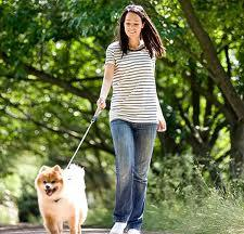 Dogs encourage 'low-risk' exercise in pregnant women