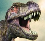 Dinosaurs' noses kept their brains cool