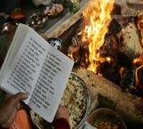Hindi, Greek among other Indo-European languages first emerged 6500 yrs ago