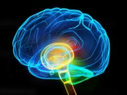Adolescents with Schizophrenia gradually lose brain gray matter