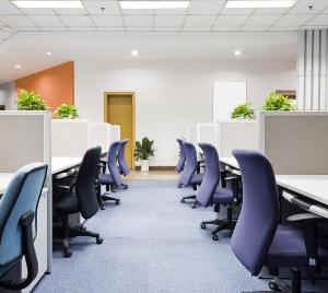 Landscaping `lean` offices with green plants can increase productivity by 15 pc