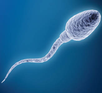 Learn from sperm how to swim against current!